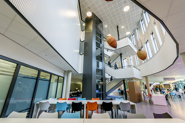 Arcus college The Netherlands Lambri Wood Panels Topline Acoustic solution